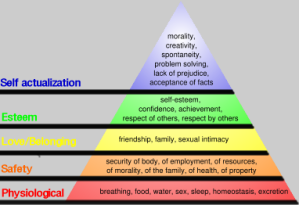 maslow's pyramid of motivational hierarchy